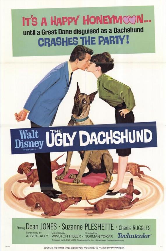 Ugly Dachshund