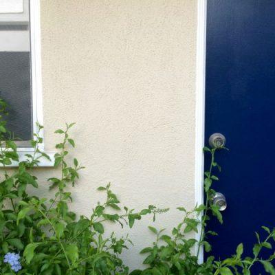 WMP: Scrape + Paint Exterior Windows